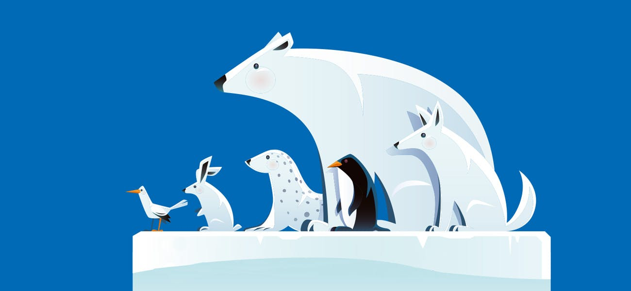 Illustration of different animals including a polar bear, artic fox and penguin, on a square piece of ice